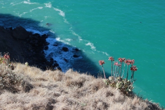 Red, Gold, Turquoise