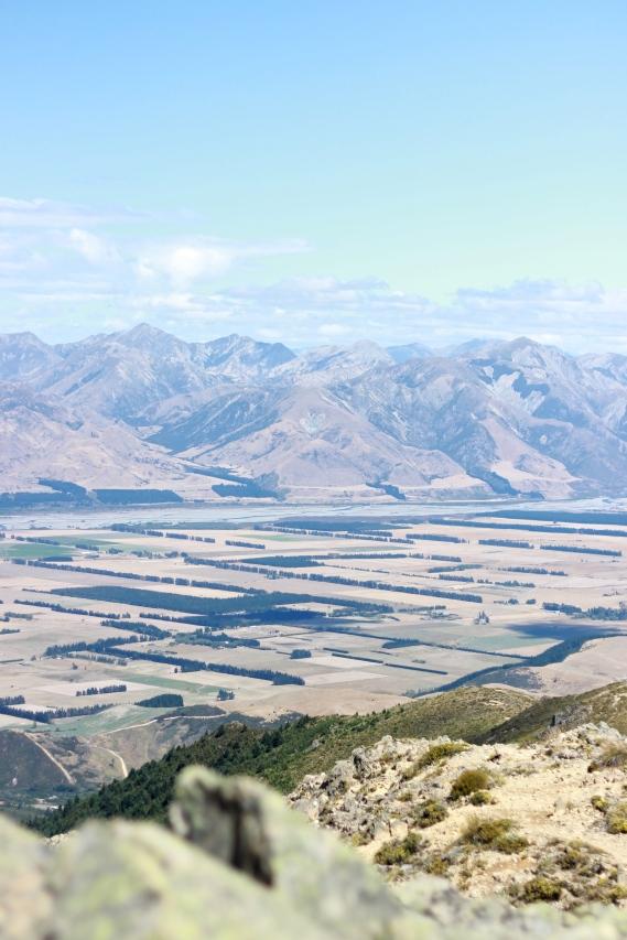 Agricultural landscape.