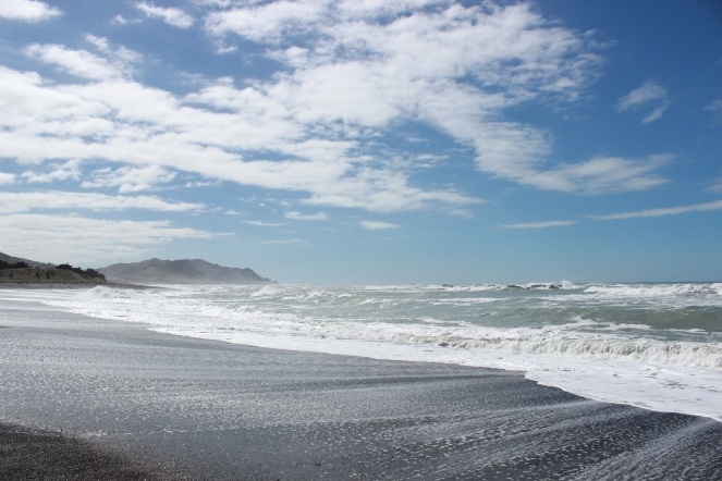 Found the black sand I saw pics of when I was googling NZ from Canada many months ago