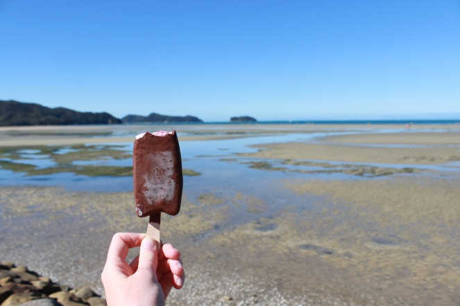 Kapiti Boysenberry Ice Cream