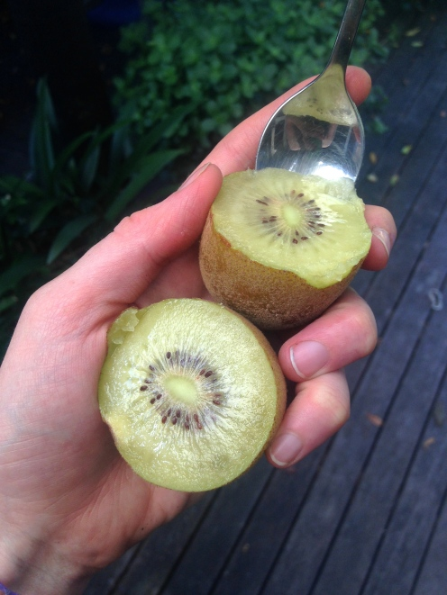 Gold Kiwis from his garden